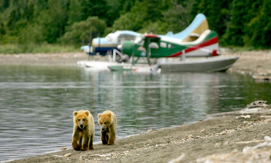 Alaska Inland Flüge buchen